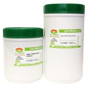 Agar_cultivo_de_tejido_vegetal_agar_plant_tissue_